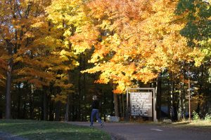 Fall at Rib Mountain State Park