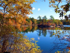 Fall Foliage in Wausau, Wisconsin